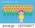 女の子 ひまわり 子供のイラスト 16334827