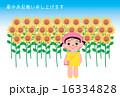 暑中見舞い ポストカード 子供のイラスト 16334828