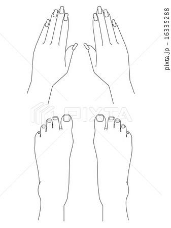 ネイルケアで美しい手足のイラスト素材 [16335288] , PIXTA