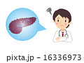 ガン 膵臓 男性のイラスト 16336973