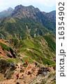 八ヶ岳・阿弥陀岳南稜を登るクライマーと権現岳 16354902