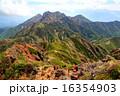 八ヶ岳・阿弥陀岳南稜を登るクライマーと権現岳 16354903