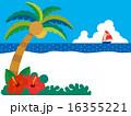 南国,椰子の木とハイビスカスのあるビーチ01 16355221