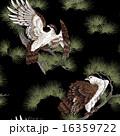 日本画 鷹に松 16359722