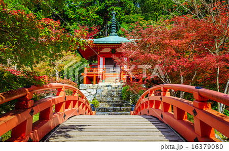 Daigoji Temple in Autumn, Kyoto, Japan 16379080