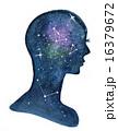 Brain 16379672