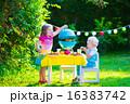 遊ぶ ピクニック グリルの写真 16383742