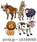 ライオン バッファロー 牛のイラスト 16389068
