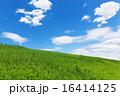 野原 空 青空の写真 16414125