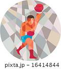 Boxer Boxing Punching Circle Low Polygon 16414844
