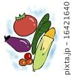 夏野菜 16421640