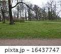ヘルシンキの公園 16437747