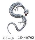 ドラゴン 16440792
