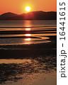 夕景 新舞子浜 海岸の写真 16441615