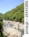 武庫川の渓谷 16445866