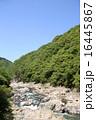 武庫川の渓谷 16445867