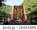 武庫川に架かる廃線の鉄橋 16445868