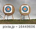 ArcheryTarget 16449606