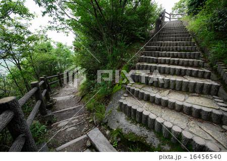 高御座山 (兵庫県加古川市) 急な階段 16456540