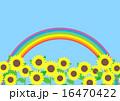 向日葵畑 青空 花畑のイラスト 16470422
