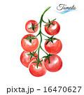 トマト オーガニック 有機のイラスト 16470627
