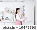 主婦(冷蔵庫)  16472598
