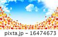 紅葉 秋空 背景のイラスト 16474673
