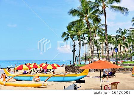 ハワイの休日 16476002
