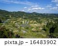 星峠 風景 段々畑の写真 16483902