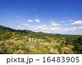 星峠 段々畑 青空の写真 16483905