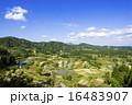 星峠 風景 段々畑の写真 16483907