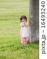 公園の木と女の子 16493240