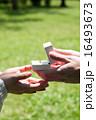指輪を手渡す手 16493673