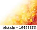 銀杏 16493855