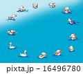 水鳥の輪 16496780
