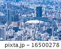 東京ドームと都市風景 16500278
