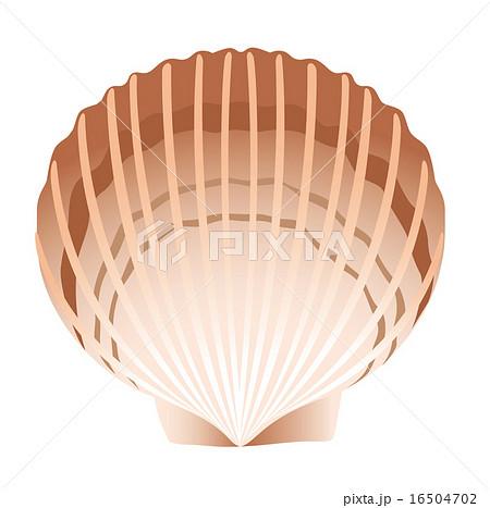 ホタテ貝のイラスト素材 16504702 Pixta