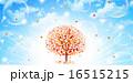16515215