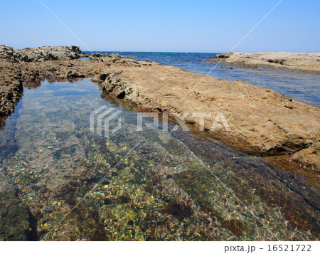 岩場の海岸 16521722