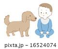 犬と赤ちゃんイラスト 16524074