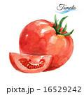 トマト オーガニック 有機のイラスト 16529242