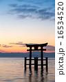 琵琶湖の夜明け 16534520