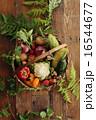 夏野菜 盛り合わせ 16544677