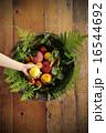 季節のフルーツ 盛り合わせ 16544692