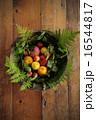 季節のフルーツ 盛り合わせ 16544817