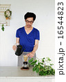 オーガニックコーヒー  カフェ 16544823