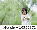 女の子 子ども 16553872