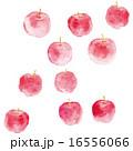 りんご模様 16556066