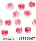 りんご模様 16556067