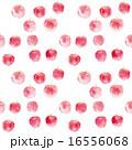 りんご模様 16556068